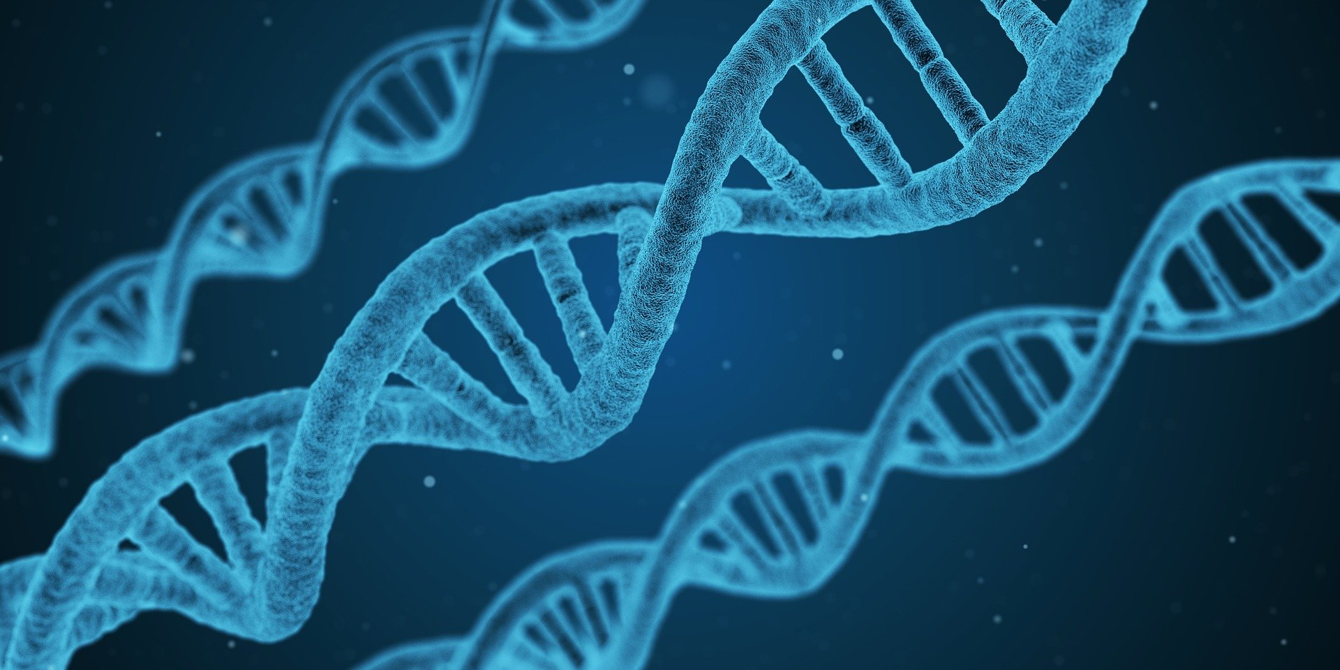 The Role of Genetics in Alcohol Addiction